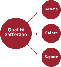 zafferano Italiano in stimmi