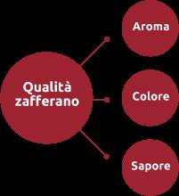 zafferano Italiano in polvere